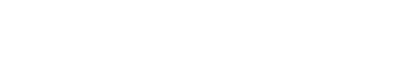 Bussiness vision logo